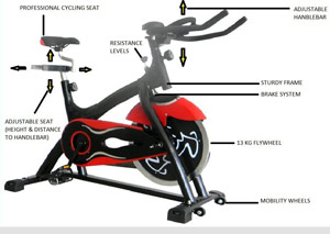 Olympic 41 Indoor Cycling Bike