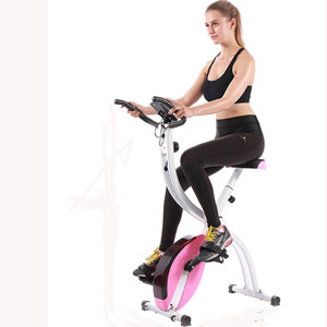 Pleny Fitness Exercise Bike