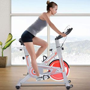 iDeer Life Indoor Exercise Bike